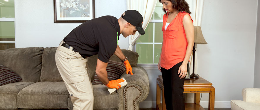 Westfield, TX carpet upholstery cleaning