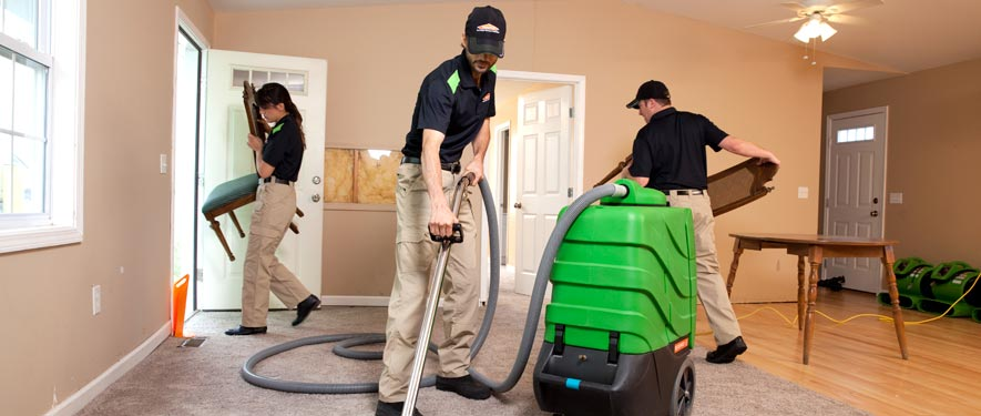 Westfield, TX cleaning services