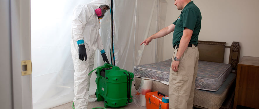 Westfield, TX mold removal process